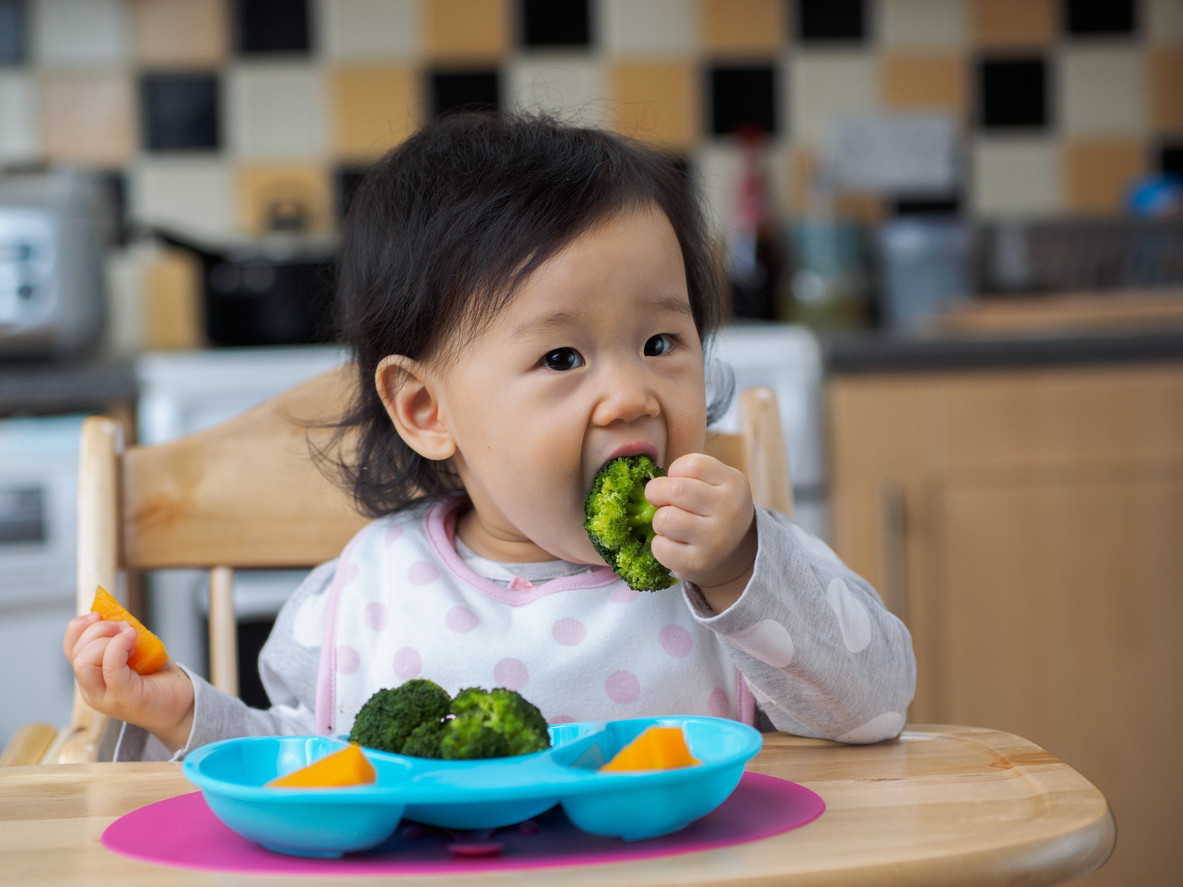 an image of a child eating baby-led weaning